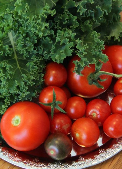 Omaa lehtikaalia, omia tomaatteja!