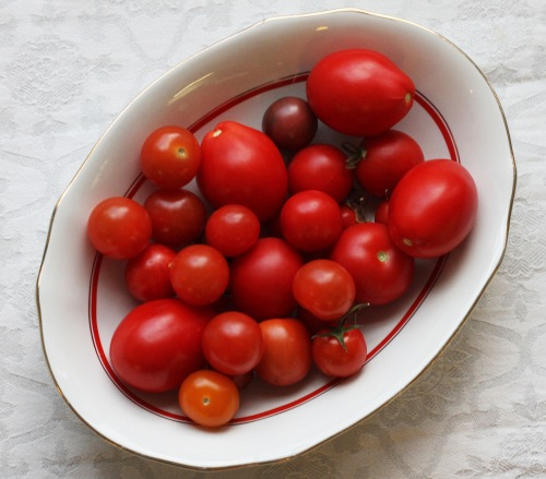 Pilkoin salaattiin vielä oman kasvihuoneen tomaatteja. Ylellistä!