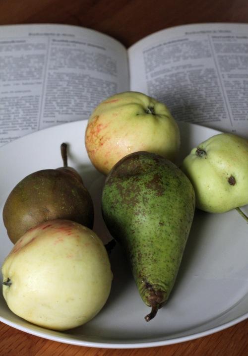 Päärynät ostin kaupasta, omenat poimin vielä pihapuusta. Vanhassa kirjassa on kahdeksan nelivärilehteä, loput ovat mustavalkoisia tekstisivuja.